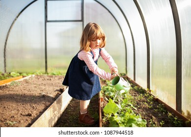 Adorable girl watering seedlings in the greenhouse at cpring, seasonal garden works. Little helper