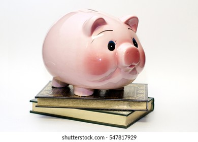 Adorable Hand Painted Vintage Ceramic Piggy Bank with Books