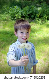 Adorable happy little boy is playing with dandelions