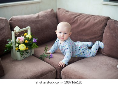 Adorable infant baby lying on sofa at home with basket of flowers and smiling