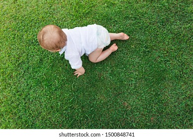 Adorable little baby crawling on green grass