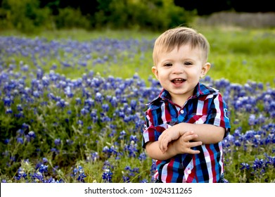 Adorable little boy in a field of bluebonnets