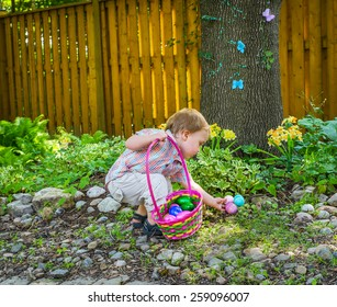 An adorable little boy holding a basket full of colorful Easter eggs finds more eggs during an egg hunt in a beautiful garden in the spring.  Part of a series.