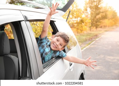 Adorable little boy leaning out of car window