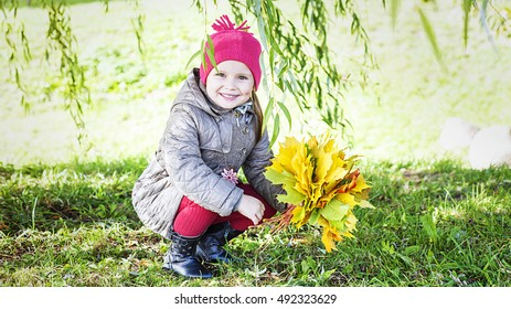 adorable little girl in autumn park with leaves, collecting autumn bouquets of colorful fallen foliage, Autumn composition, bouquet of brightly colored red orange and yellow maple leaf,