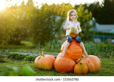 Adorable little girl embracing big pumpkin on a pumpkin patch