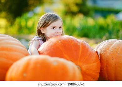 Adorable little girl embracing big pumpkin on a pumpkin patch