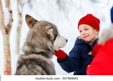 Adorable little girl having a cuddle with husky sled dog in Lapland Finland
