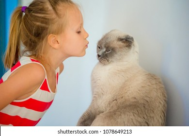 Adorable little girl with her pet cat at home. Love between kid and pet