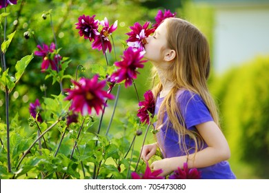 Adorable little girl sniffing purple flowers. Child and flowers, summer, nature and fun. Summer holidays.
