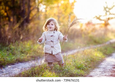 Adorable little girl wearing beige coat. Autumn forrest walk
