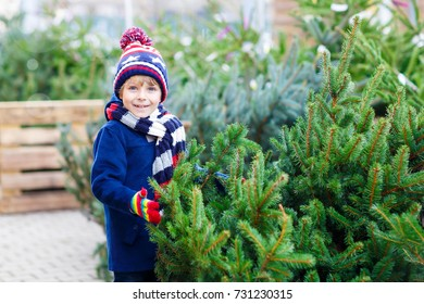 Adorable little smiling kid boy holding christmas tree in a shop. Happy child