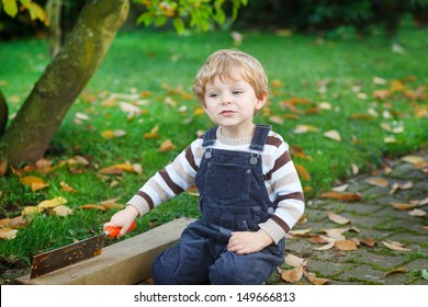 Adorable little toddler boy playing in autumn garden
