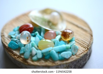 Adorable little wood slice with a natural shell. Beach themed terrarium, adorable little beach scene on wood. Craft carnelian, amazonite, and quartz. Bohemian desktop decor.