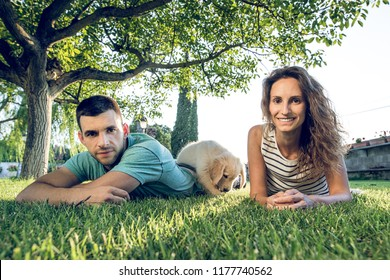 Adorable puppy dog playing with a couple of boyfriends. Puppy of the breed Labrador Retriever