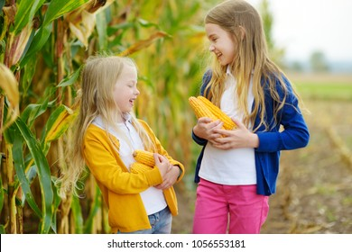 Adorable sisters playing in a corn field on beautiful autumn day. Pretty children holding cobs of corn. Harvesting with kids. Autumn activities for children.