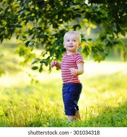 Adorable toddler boy playing with soap bubbles outdoors