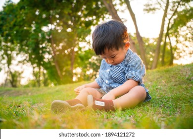 Adorable toddler boy sitting on green grass sunset park outdoor activity