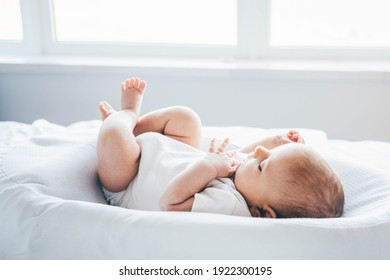 Adorable two month old baby lying on cocoon.