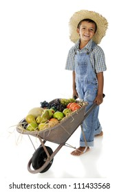 An adorable young farmer pushing a wheelbarrow full of assorted fruit.  On a white background.