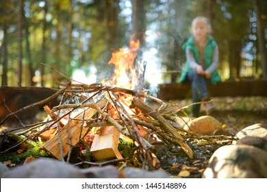 Adorable young girl roasting marshmallows on stick at bonfire. Child having fun at camp fire. Camping with children in fall forest. Family leisure with kids at autumn.