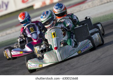 Adria, Rovigo (Italy) - October 1, 2016: Tony Kart Racing Team , driven by Ardigo' Marco,  during eliminatory heat in the Wsk Final Cup in Adria Karting Raceway, Italy.