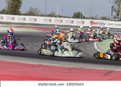 Adria, Rovigo (Italy) - October 1, 2016: Karting prepare to leave the grid at the start during race one at the Adria Karting Raceway on  during Wsk Final Cup in Adria Karting Raceway, Italy.