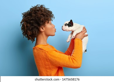 Adult Afro girl stands in profile, raises little puppy in air, wants to kiss pet, expresses affection, wears orange jumper, isolated on blue background. Tender scene with people and animals.