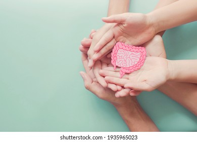 adult and child hands holding intestine shape, healthy bowel degestion, leaky gut, probiotics and prebotics for gut health, colon, gastric, stomach cancer concept
