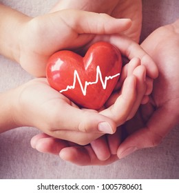 adult and child hands holding red heart, health care, organ donation, family insurance concept