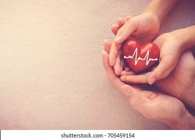 Photo of adult and child hands holding red heart with cardiogram, health care, love and family insurance concept, world heart day