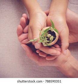 adult and child hands holding seedling plants in eggshells, eco gardening,  montessori, education concept