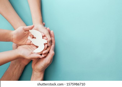 Adult and child hands holding white dove bird on blue background, international day of peace or world peace day concept, sustainable consumption, csr responsible business, animal rights, hope concept - Shutterstock ID 1575986710