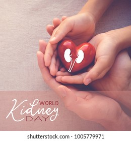 adult and child hands holiding red heart, health care , world kidney day