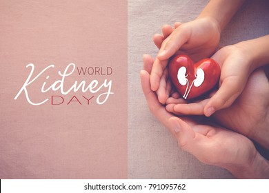 adult and child hands holiding red heart, health care, world kidney day
