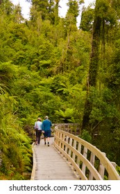 An adult couple walking in a wooden pathway surrounded by a lush green forest. hokitika gorge, west coast, south island of new zealand