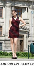 Adult Female Posing Wearing Dress Standing