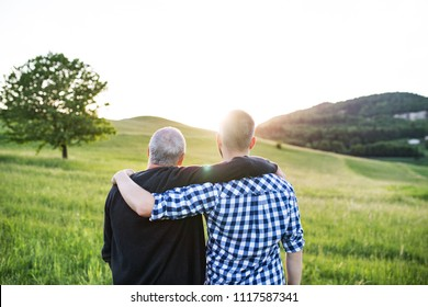An adult hipster son with senior father standing in nature at sunset. Rear view.