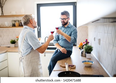 An adult hipster son and senior father indoors in kitchen at home, drinking wine.