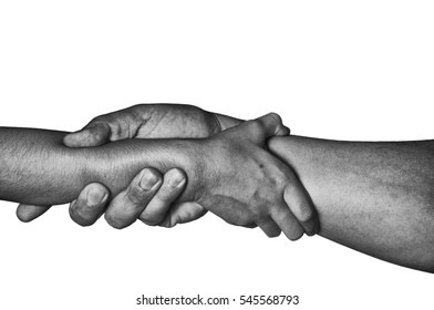 adult and kid hands hold each other firmly in black and white isolated on white.