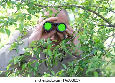 adult man holding black field binoculars with zoom, hiding in greenery, peeping out of green bushes, hunts down secrets, concept of surveillance, observation, investigating crime, chromakey lenses