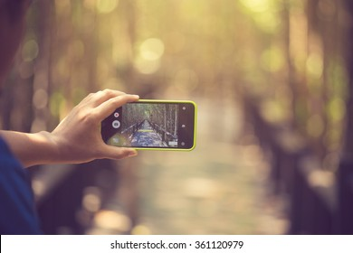 Adult man taking a picture with smart phone. Outdoor shot in nature. Shallow depth of field.vintage color