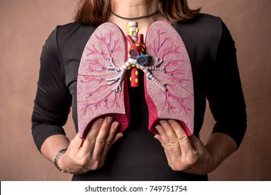 Adult woman with Medical Model of the Human Lungs