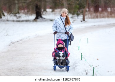 Adult woman walking with her baby on winter park way, pulling sled with daughter on snow pathway, copyspace