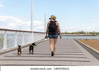 Adult woman walking near the river  with her dogs