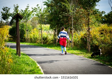 Adult woman wearing striped casual blouse walking with her small dog on a flexible line on a asphalt pathway along green grass and trees in the Szachty park on circa September 2019 in Poznan, Poland.