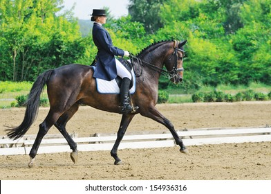 Advanced Dressage test: extended trot