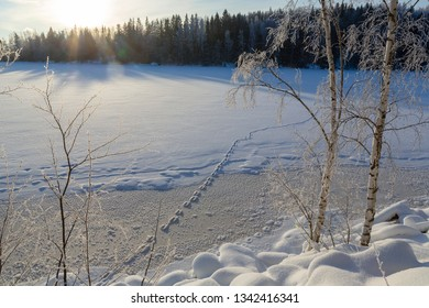 Adventure on the ice in a winter wonderland. Cold winter morning with footprints on the ice.