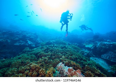 adventure time with the best diving spot at Losin south of Thailand