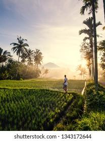 adventurer exploring ricefields in ubud bali indonesia during sunrise sun rays